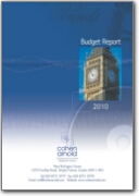 Budget Report 2010